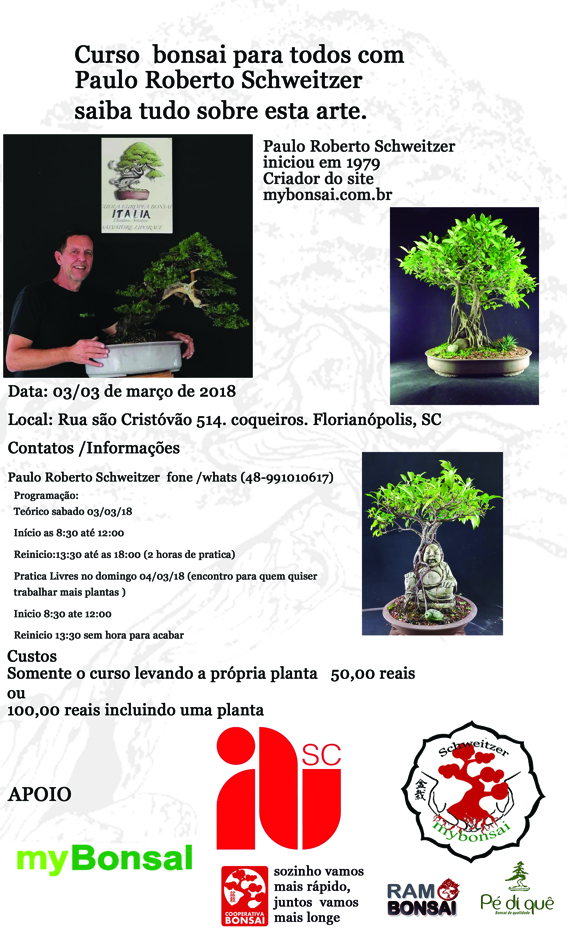 curso bonsai menor